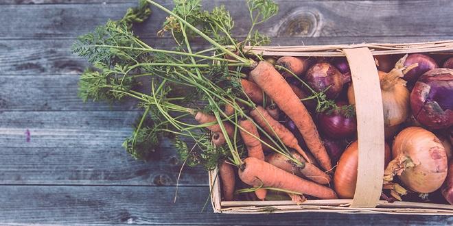 urban farming, urban gardening